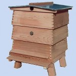 beekeeping-york-only